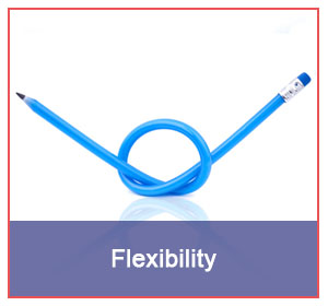why-choose_0000_flexibility